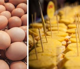 Parlem d'ous
